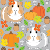 fall guinea pigs on medium grey