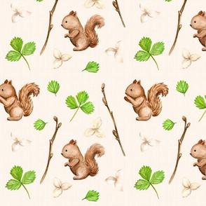 Cute Squirrels / Mignons écureuils