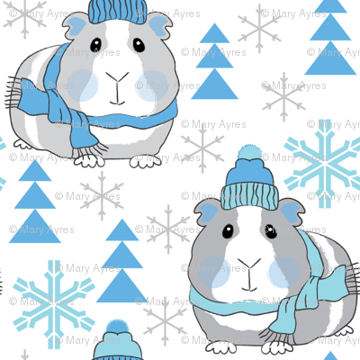 winter guinea pigs