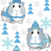 Guinea-pigs-winter_shop_thumb