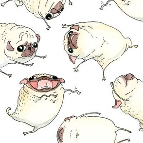 "3-4"" Pug Interpretive Dance"