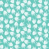 succulent aloe vera turquoise