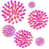 Fireworks - orange and magenta
