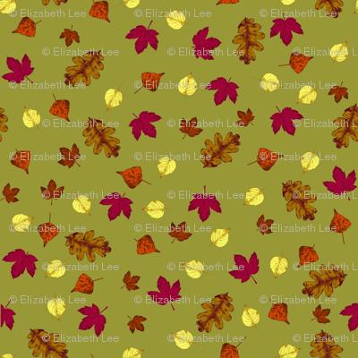 Fluttering Leaves on Golden Lime