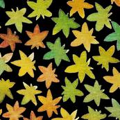 fallen leaves black