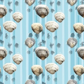 Shell in blue stripes
