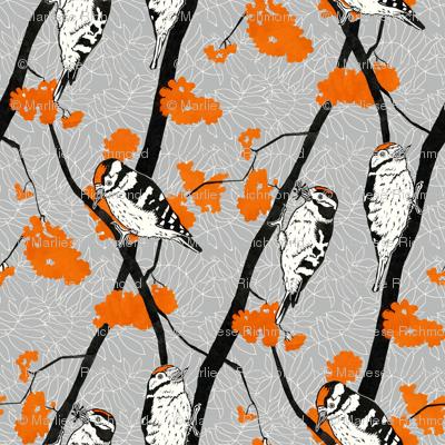 Woodpeckers and Orange Rowan Berries