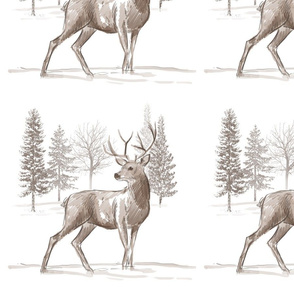 frosty forest - lone stag