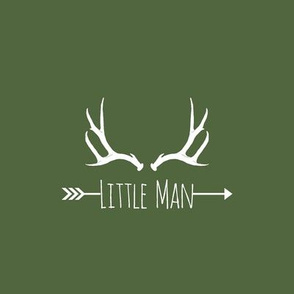 Little Man Antlers (8x8 quilt square) - on timber green