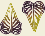 Rrspoonflower_-_small_potato_vine_leaves_natural_background_thumb