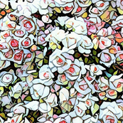 Roses in mosaic