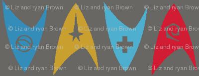 Insignia Pin Rows // Charcoal