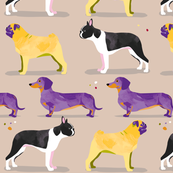 Dogs in the park // grey cream purple yellow pug dachshund boston terrier sausage dog spots
