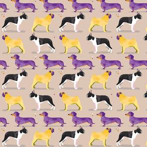 Dogs in the park // grey cream purple yellow pug dachshund boston terrier sausage dog spots