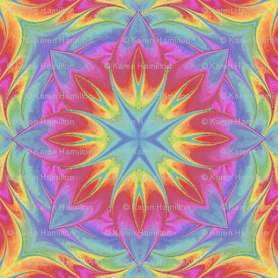 Painted_Rainbow_Flower4