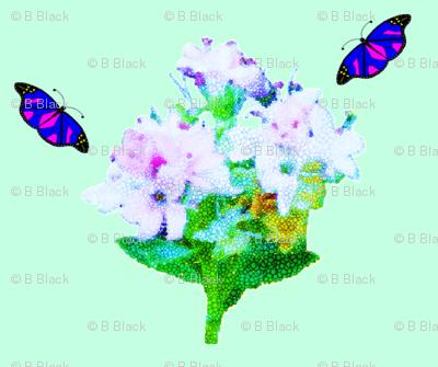 Bouquets & Butterflies
