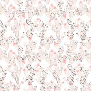 blush paddle cactus + rose // small