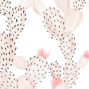 blush paddle cactus + rose // oversized