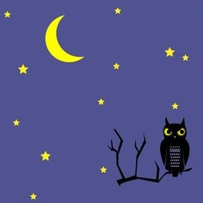 midnight owl under the moon