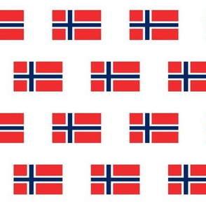 Norwegian Flag // Small