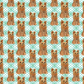 Yorkie Twirling Tiffany Dots