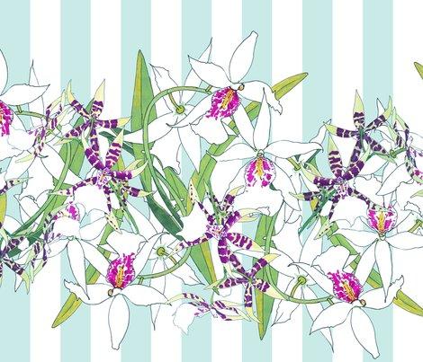 White-orchids-border-aqua-stripes_shop_preview