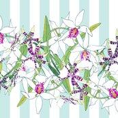 White-orchids-border-aqua-stripes_shop_thumb