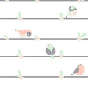 birdy line