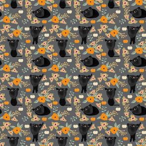 catspattern2