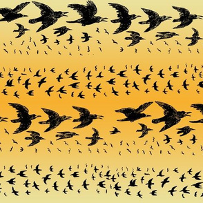 caw_caw_gradient_orange_yellow