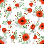 R6745397_rrpoppy_scatter_shop_thumb