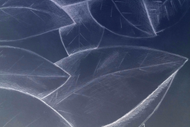 Nature Wins fabric by sugarsticks63 on Spoonflower - custom fabric