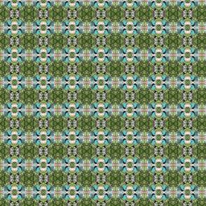 BLUE MailBx TENN-C  IMG_1505