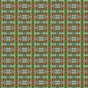 FallLEAF TENN-C IMG_1029