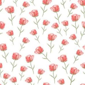 Sweet-Rose-pink