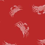 Hawaiian Tide Pools-Red A'ama Rock Crab