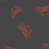 Hawaiian Tide Pools-Gray Red A'ama Rock Crab