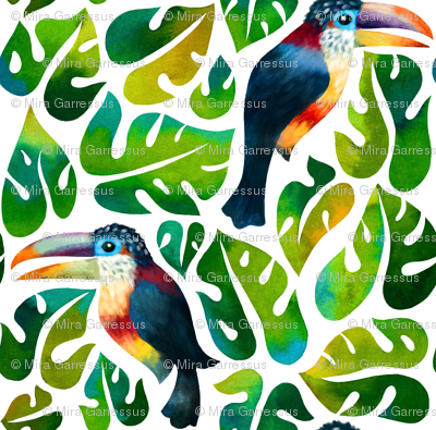 Curl Crested Aracari Toucans with monstera leaves