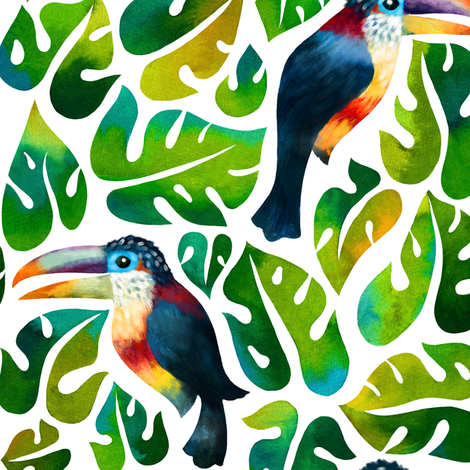Curl Crested Aracari Toucans with monstera leaves fabric by mirabelleprint on Spoonflower - custom fabric
