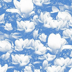 Magnolias Soft Blue Upholstery Fabric