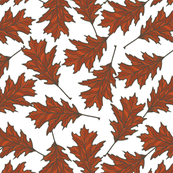 Red Oak Leaves - White
