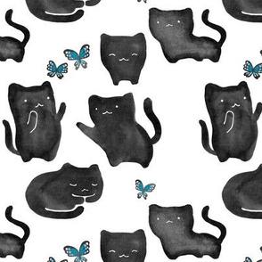 Black Cats and Butterflies