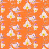 Mariposa Bright