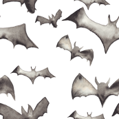 Watercolor Bats - 800 DPI