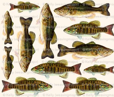 one yard of fish plushies - smallmouth bass and largemouth bass