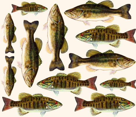 one yard of fish plushies - smallmouth bass and largemouth bass  fabric by weavingmajor on Spoonflower - custom fabric