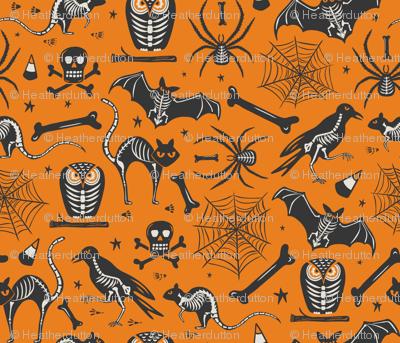 Halloween X-Ray - Orange & Black