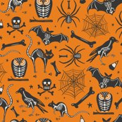 Rrrhalloween_x-ray_3_orange_contest_flat_after_challenge_300__for_wp_shop_thumb
