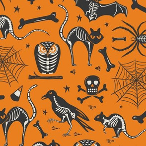 Halloween X-Ray - Orange & Black