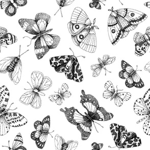 Dot art butterflies